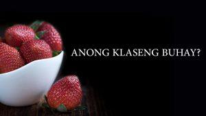 Anong Klaseng Buhay?