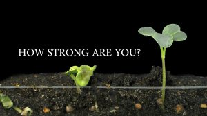 How Strong Are You?
